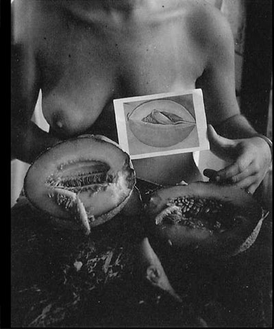 From the three kinds of melon in four kinds of light series, Providence Rhode Island, 1976